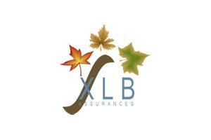 Logo XLB